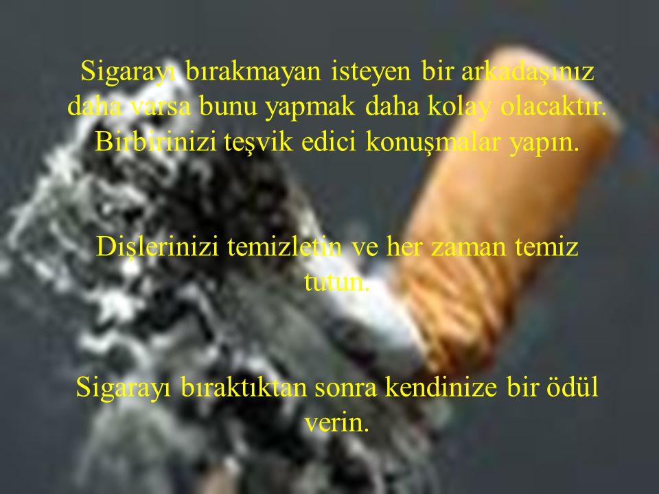 Sigarayı bırakmayan isteyen bir arkadaşınız daha varsa bunu yapmak daha kolay olacaktır. Birbirinizi teşvik edici konuşmalar yapın. Dişlerinizi temizl