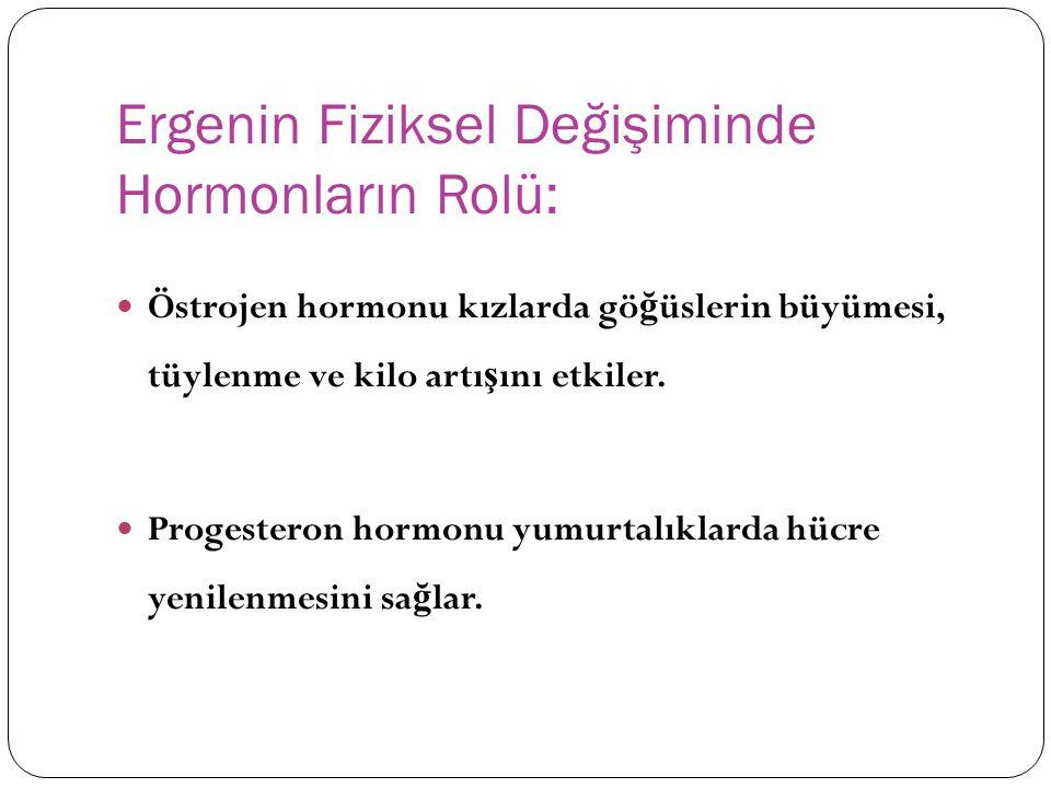 Ergenin Fiziksel Değişiminde Hormonların Rolü: Östrojen hormonu kızlarda gö ğ üslerin büyümesi, tüylenme ve kilo artı ş ını etkiler. Progesteron hormo