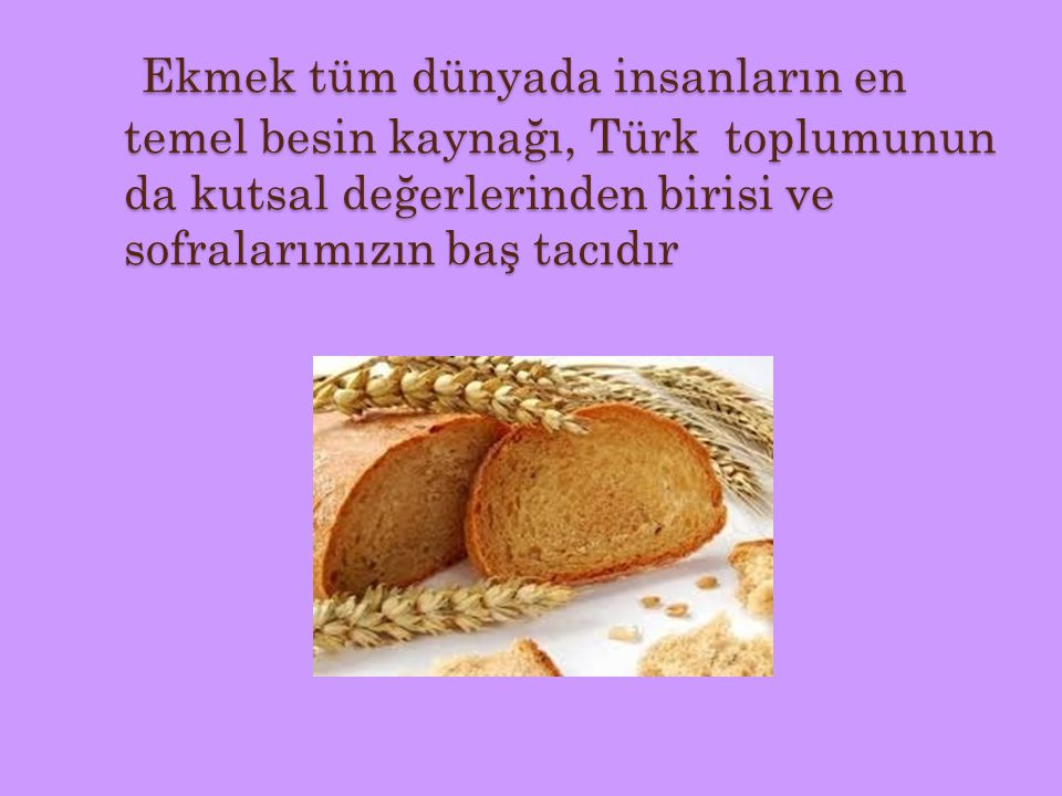 Ekmek tüm dünyada insanların en temel besin kaynağı, Türk toplumunun da kutsal değerlerinden birisi ve sofralarımızın baş tacıdır Ekmek tüm dünyada in
