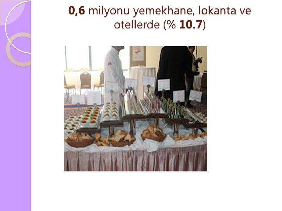 0,6 milyonu yemekhane, lokanta ve otellerde (% 10.7)
