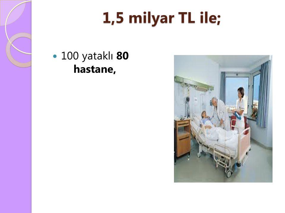 1,5 milyar TL ile; 100 yataklı 80 hastane,