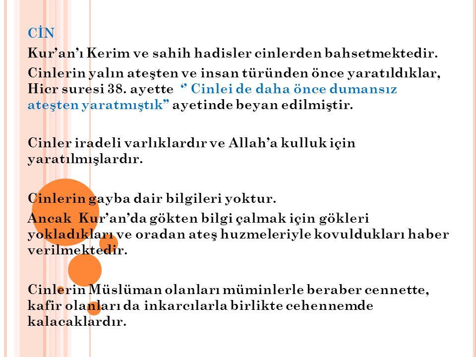 CİN Kur'an'ı Kerim ve sahih hadisler cinlerden bahsetmektedir.