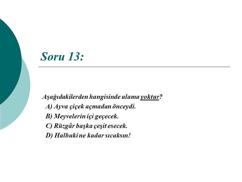 Soru 13: Aşağıdakilerden hangisinde ulama yoktur? A) Ayva çiçek açmadan önceydi. B) Meyvelerin içi geçecek. C) Rüzgâr başka çeşit esecek. D) Halbuki n