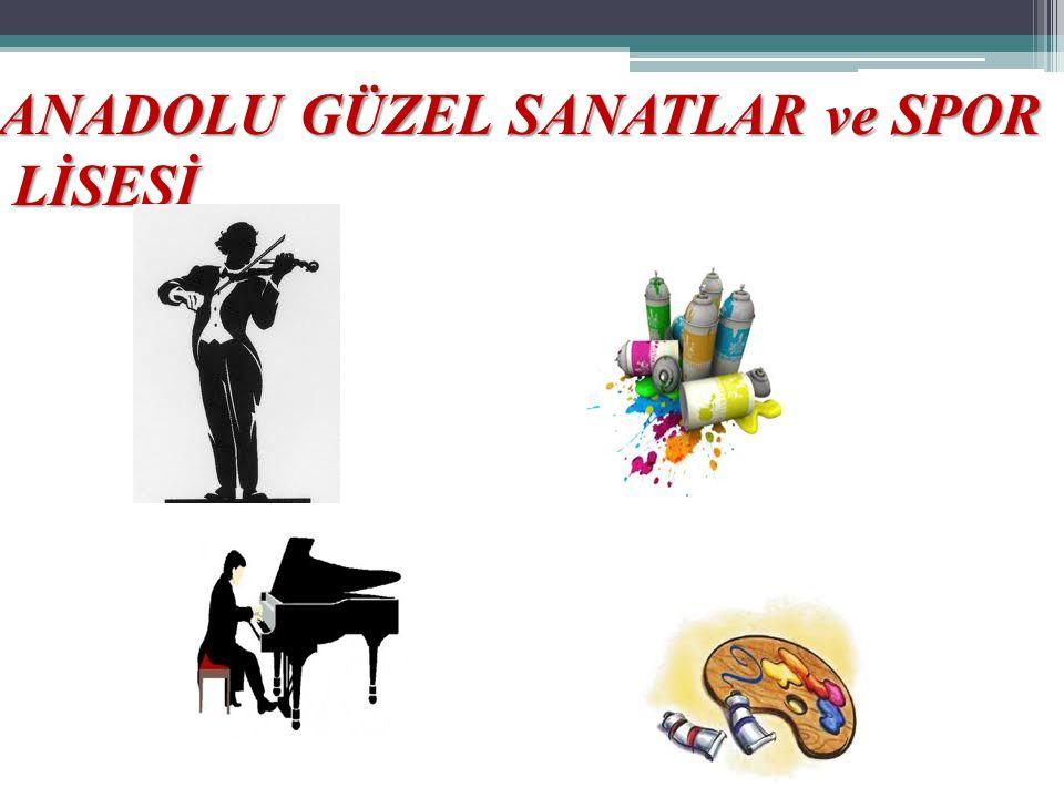 ANADOLU GÜZEL SANATLAR ve SPOR LİSESİ LİSESİ
