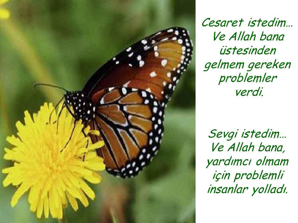 Cesaret istedim… Ve Allah bana üstesinden gelmem gereken problemler verdi. Sevgi istedim… Ve Allah bana, yardımcı olmam için problemli insanlar yollad