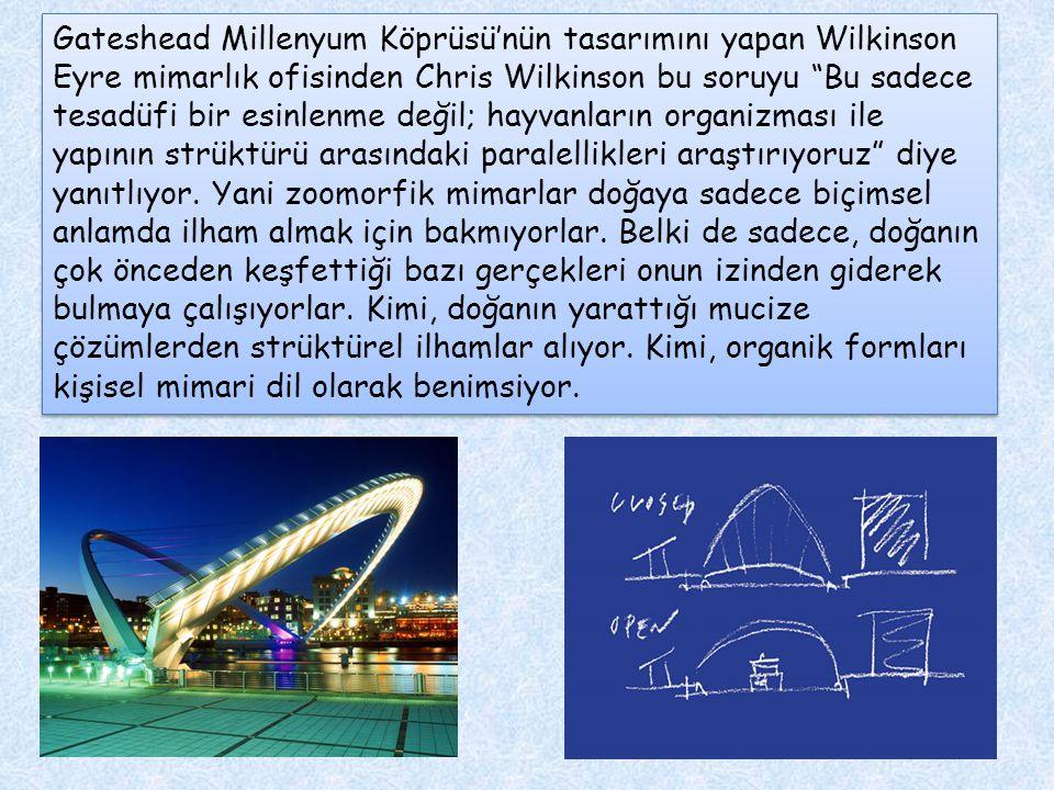 """Gateshead Millenyum Köprüsü'nün tasarımını yapan Wilkinson Eyre mimarlık ofisinden Chris Wilkinson bu soruyu """"Bu sadece tesadüfi bir esinlenme değil;"""