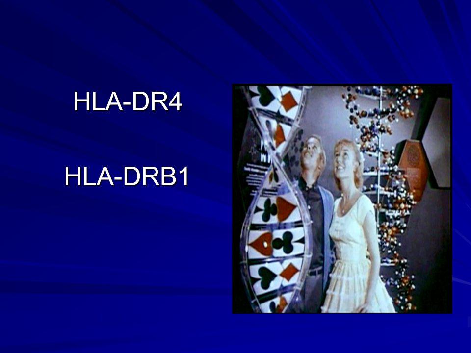 HLA-DR4HLA-DRB1