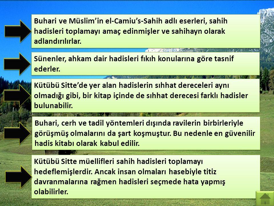 Kütübü Tis'a el-Câmiu's-Sahîh es-Sünen el-Muvatta el-Müsned es-Sünen Kütübü Sitte Muhammed b. İsmail el-Buhari Müslim b. Haccac el-Kuşeyrî Ebu Davud,