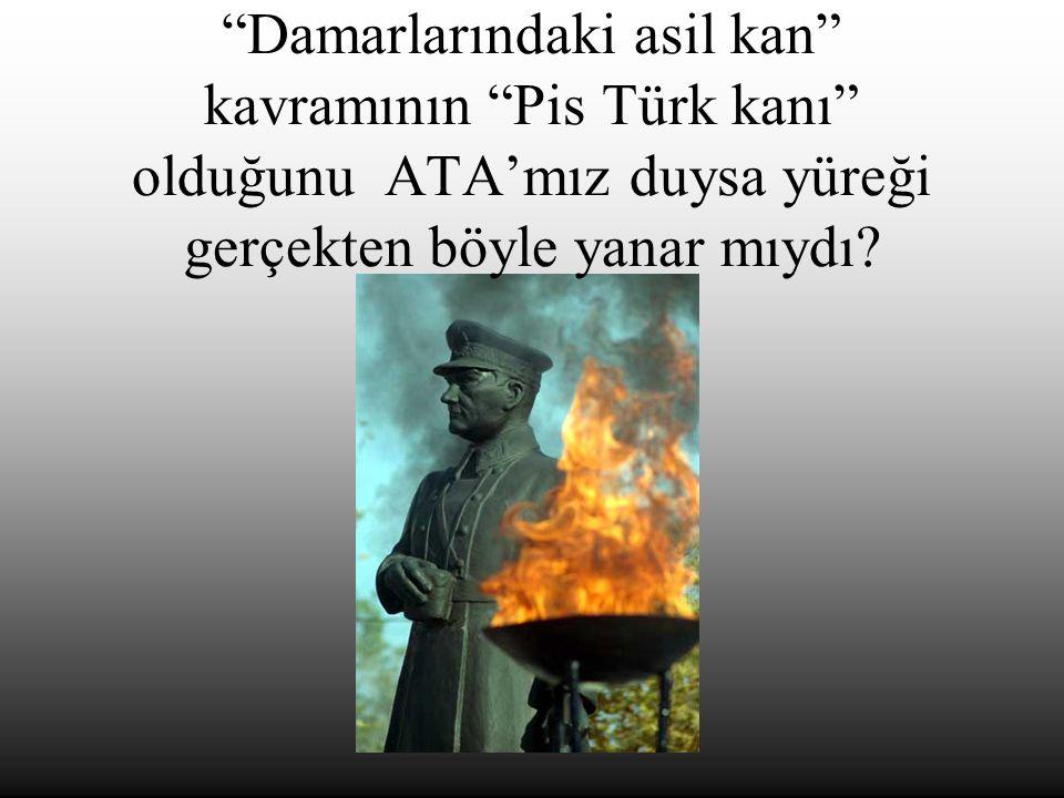 """""""Damarlarındaki asil kan"""" kavramının """"Pis Türk kanı"""" olduğunu ATA'mız duysa yüreği gerçekten böyle yanar mıydı?"""