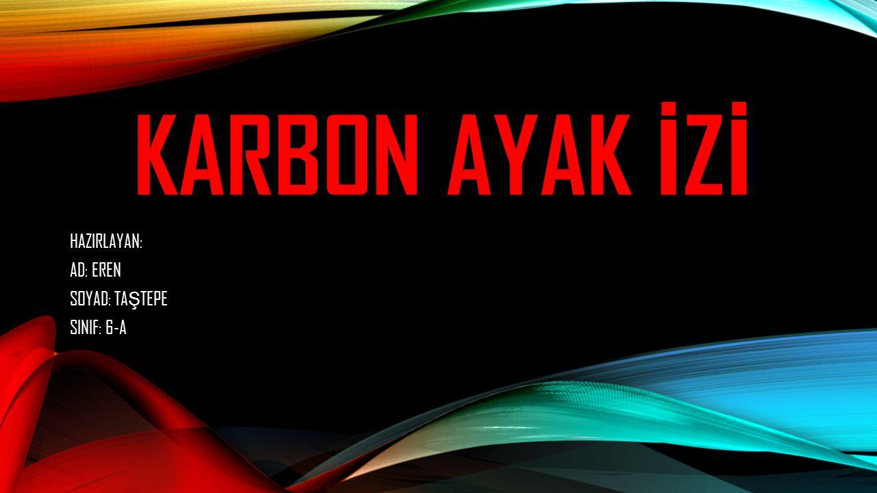 KARBON AYAK İ Z İ NED İ R .