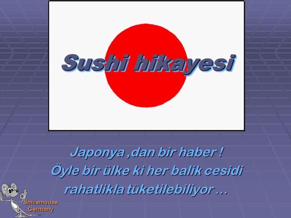 Smilemouse Germany Sushi yazisi bile sanki bir seyler anlatmak istiyor, dikkatlice bakin ….