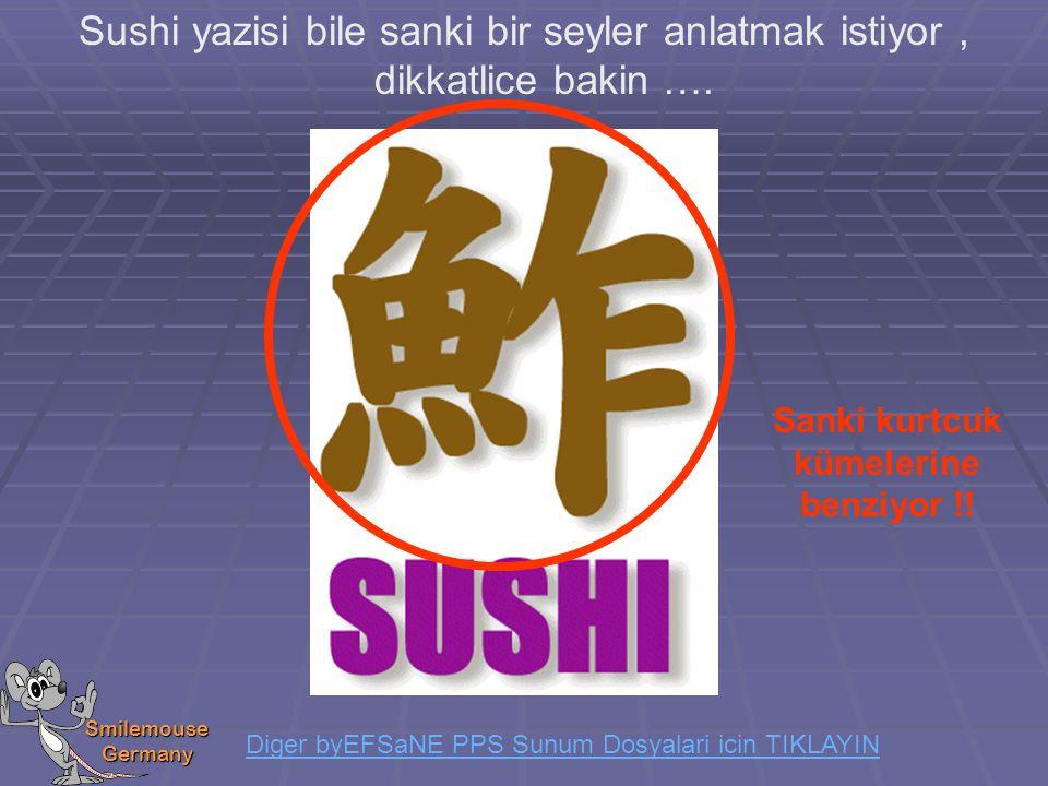 Smilemouse Germany Sushi yazisi bile sanki bir seyler anlatmak istiyor, dikkatlice bakin …. Sanki kurtcuk kümelerine benziyor !! Diger byEFSaNE PPS Su