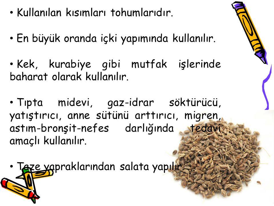 Kullanılan kısımları tohumlarıdır. En büyük oranda içki yapımında kullanılır. Kek, kurabiye gibi mutfak işlerinde baharat olarak kullanılır. Tıpta mid