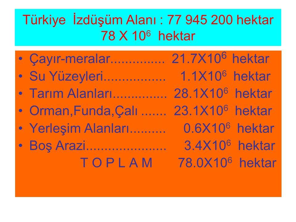 Türkiye İzdüşüm Alanı : 77 945 200 hektar 78 X 10 6 hektar Çayır-meralar............... 21.7X10 6 hektar Su Yüzeyleri................. 1.1X10 6 hektar