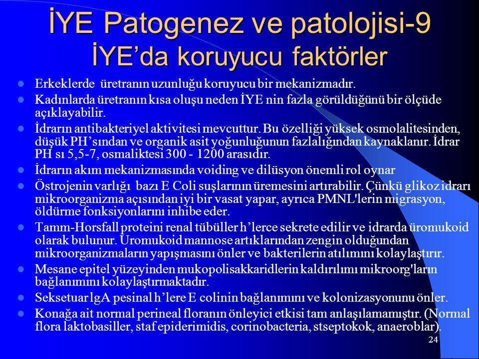 24 İYE Patogenez ve patolojisi-9 İYE'da koruyucu faktörler Erkeklerde üretranın uzunluğu koruyucu bir mekanizmadır. Kadınlarda üretranın kısa oluşu ne