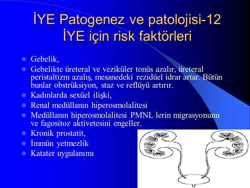 27 İYE Patogenez ve patolojisi-12 İYE için risk faktörleri Gebelik, Gebelikte üreteral ve veziküler tonüs azalır, üreteral peristaltizm azalış, mesane