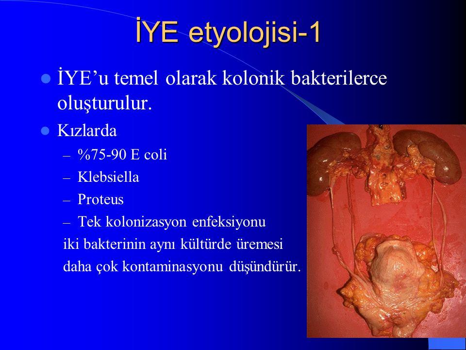 7 İYE etyolojisi-1 İYE'u temel olarak kolonik bakterilerce oluşturulur. Kızlarda – %75-90 E coli – Klebsiella – Proteus – Tek kolonizasyon enfeksiyonu