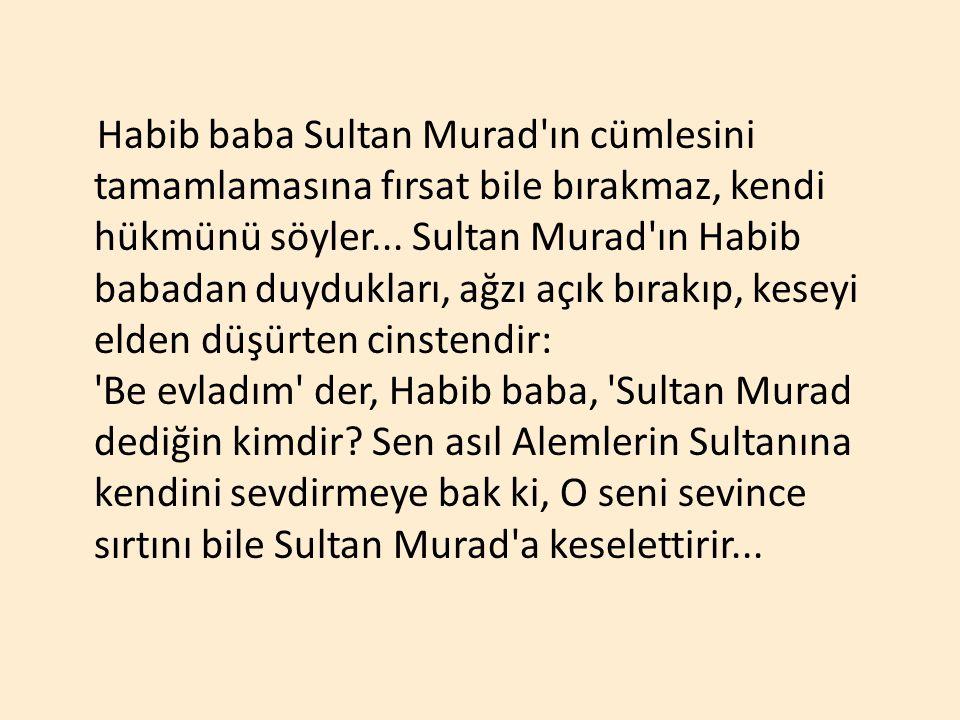 Habib baba Sultan Murad'ın cümlesini tamamlamasına fırsat bile bırakmaz, kendi hükmünü söyler... Sultan Murad'ın Habib babadan duydukları, ağzı açık b