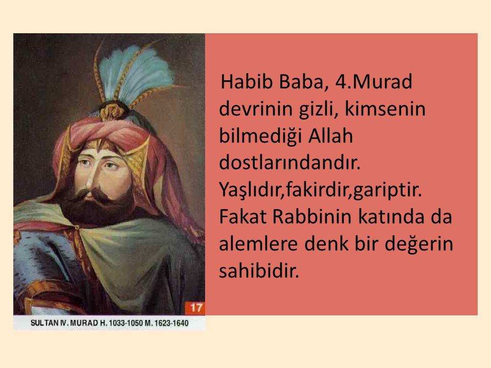 Habib Baba, 4.Murad devrinin gizli, kimsenin bilmediği Allah dostlarındandır. Yaşlıdır,fakirdir,gariptir. Fakat Rabbinin katında da alemlere denk bir