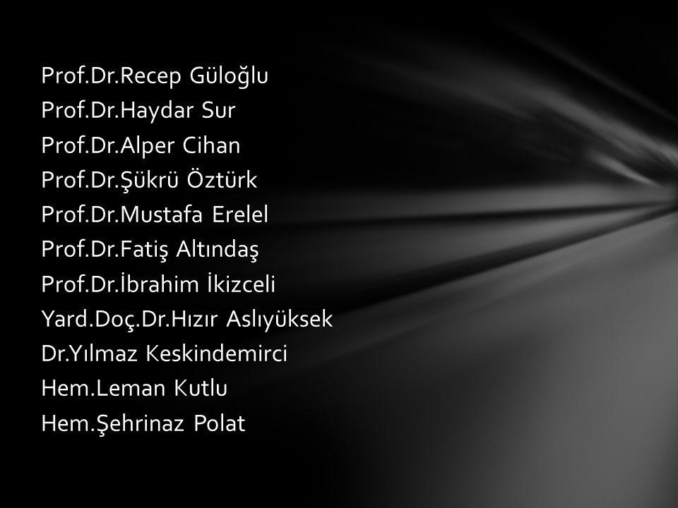 Prof.Dr.Recep Güloğlu Prof.Dr.Haydar Sur Prof.Dr.Alper Cihan Prof.Dr.Şükrü Öztürk Prof.Dr.Mustafa Erelel Prof.Dr.Fatiş Altındaş Prof.Dr.İbrahim İkizce