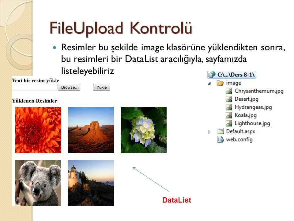 FileUpload Kontrolü Resimler bu şekilde image klasörüne yüklendikten sonra, bu resimleri bir DataList aracılı ğ ıyla, sayfamızda listeleyebiliriz DataList