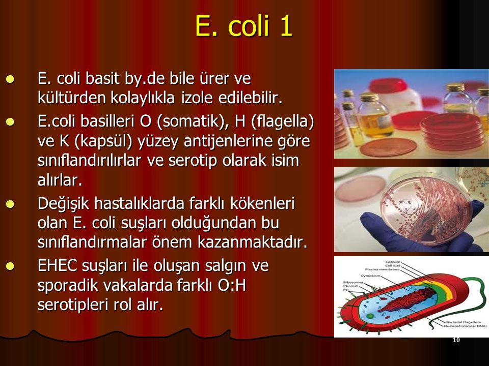 10 E. coli 1 E. coli basit by.de bile ürer ve kültürden kolaylıkla izole edilebilir. E. coli basit by.de bile ürer ve kültürden kolaylıkla izole edile