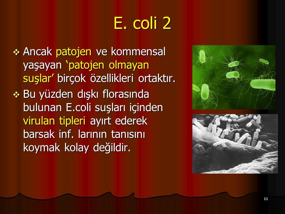 11 E. coli 2  Ancak patojen ve kommensal yaşayan 'patojen olmayan suşlar' birçok özellikleri ortaktır.  Bu yüzden dışkı florasında bulunan E.coli su