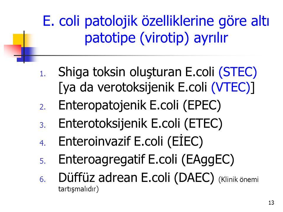 13 1. Shiga toksin oluşturan E.coli (STEC) [ya da verotoksijenik E.coli (VTEC)] 2. Enteropatojenik E.coli (EPEC) 3. Enterotoksijenik E.coli (ETEC) 4.