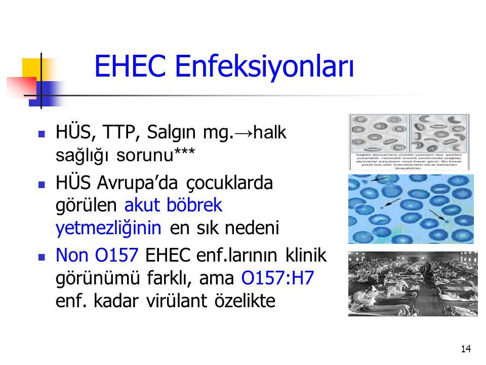 14 EHEC Enfeksiyonları HÜS, TTP, Salgın mg. →halk sağlığı sorunu*** HÜS Avrupa'da çocuklarda görülen akut böbrek yetmezliğinin en sık nedeni Non O157