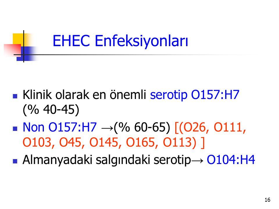 16 Klinik olarak en önemli serotip O157:H7 (% 40-45) Non O157:H7 → (% 60-65) [(O26, O111, O103, O45, O145, O165, O113) ] Almanyadaki salgındaki seroti
