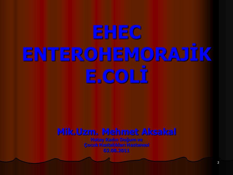 13 1.Shiga toksin oluşturan E.coli (STEC) [ya da verotoksijenik E.coli (VTEC)] 2.