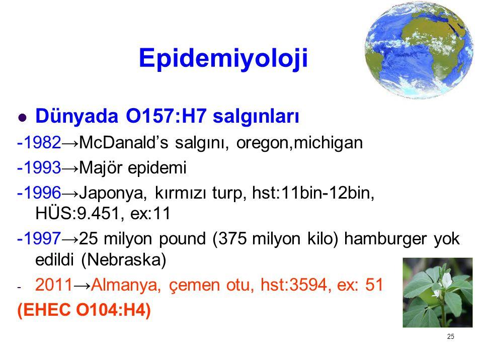 25 Epidemiyoloji Dünyada O157:H7 salgınları -1982→McDanald's salgını, oregon,michigan -1993→Majör epidemi -1996→Japonya, kırmızı turp, hst:11bin-12bin
