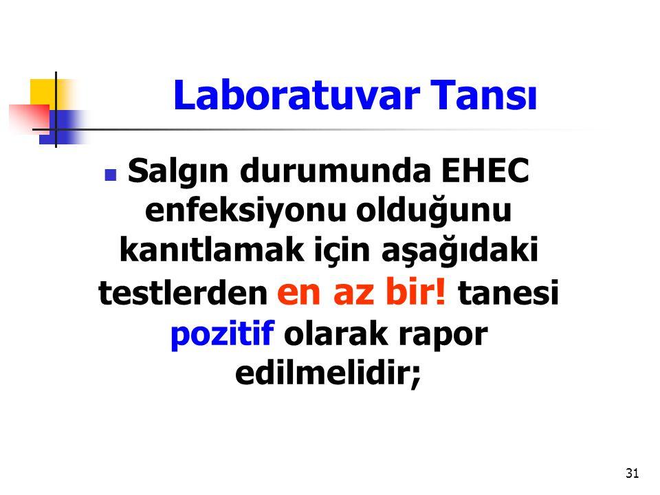 31 Laboratuvar Tansı Salgın durumunda EHEC enfeksiyonu olduğunu kanıtlamak için aşağıdaki testlerden en az bir! tanesi pozitif olarak rapor edilmelidi