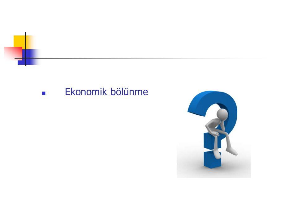 Ekonomik bölünme