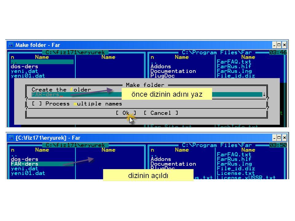 Dizin ve Dosyayı bulunduğu yerden silip bir başka adrese taşı ya da Ad Değiştir F6 veya RenMov u tıkla F1 penceresi c:\fiz171\eryurek de olacak şekilde ayarlayın.