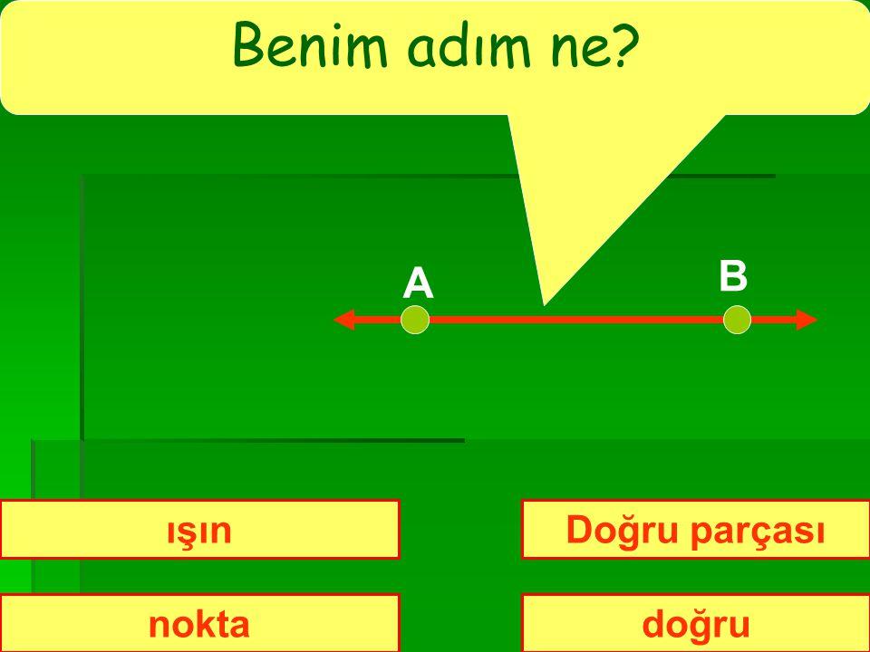 PUAN 10