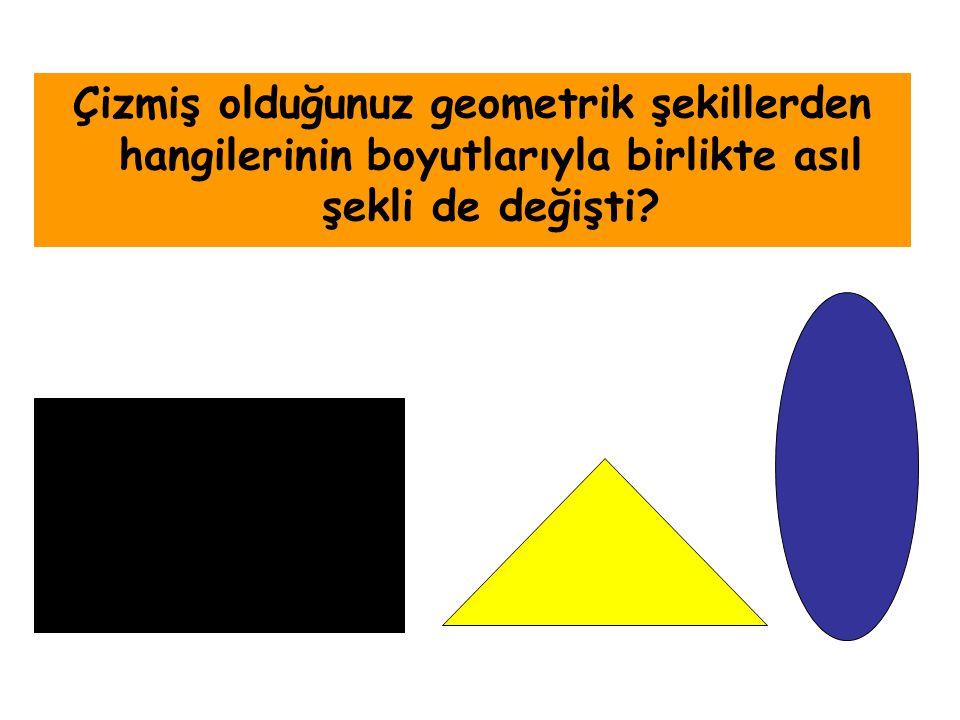 Çizmiş olduğunuz geometrik şekillerden hangilerinin boyutlarıyla birlikte asıl şekli de değişti?