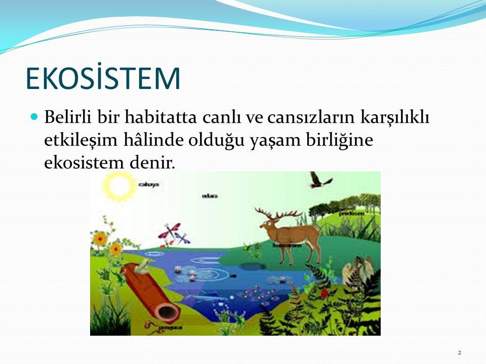EKOSİSTEM Belirli bir habitatta canlı ve cansızların karşılıklı etkileşim hâlinde olduğu yaşam birliğine ekosistem denir. 2