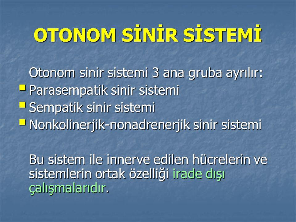 OTONOM SİNİR SİSTEMİ Otonom sinir sistemi 3 ana gruba ayrılır:  Parasempatik sinir sistemi  Sempatik sinir sistemi  Nonkolinerjik-nonadrenerjik sin