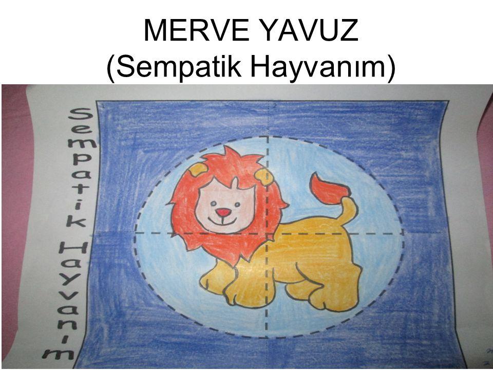 MERVE YAVUZ (Sempatik Hayvanım)