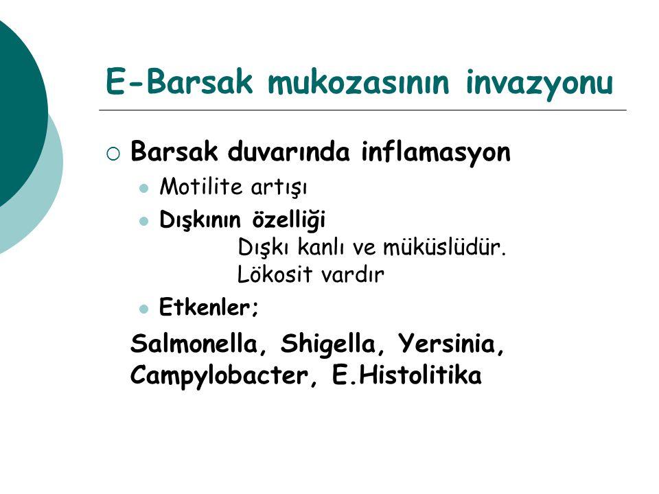 E-Barsak mukozasının invazyonu  Barsak duvarında inflamasyon Motilite artışı Dışkının özelliği Dışkı kanlı ve müküslüdür. Lökosit vardır Etkenler; Sa