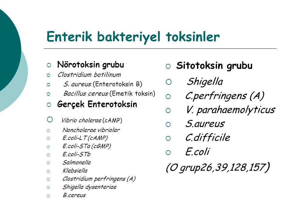 Enterik bakteriyel toksinler  Nörotoksin grubu  Clostridium botilinum  S. aureus (Enterotoksin B)  Bacillus cereus (Emetik toksin)  Gerçek Entero