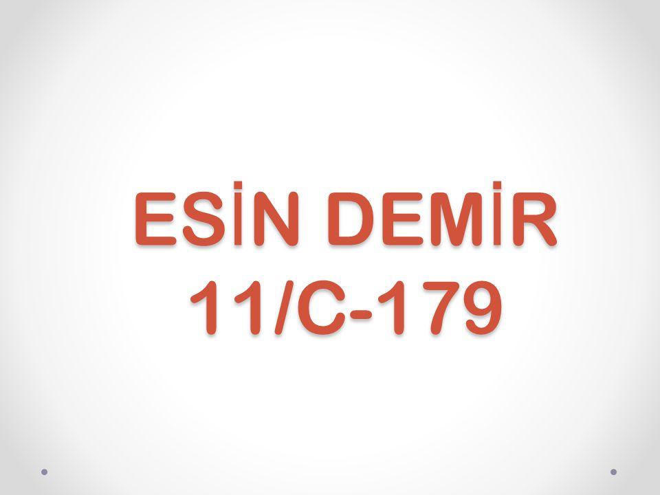 ES İ N DEM İ R 11/C-179