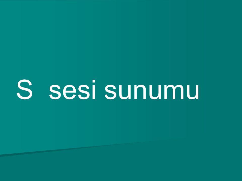 Hikmet Sırma 1-A suss