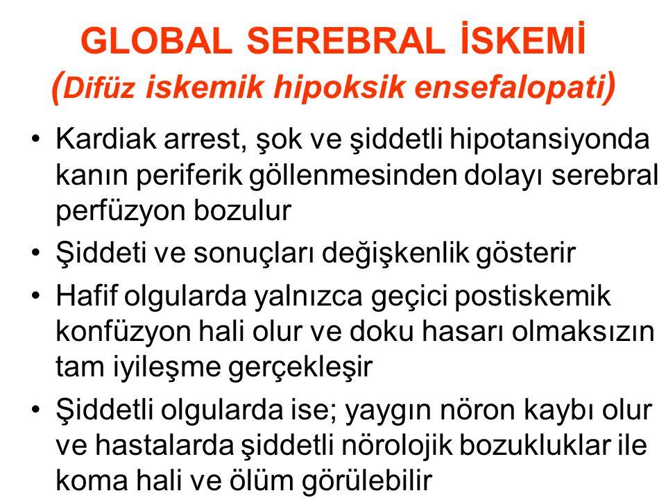 GLOBAL SEREBRAL İSKEMİ ( Difüz iskemik hipoksik ensefalopati ) Kardiak arrest, şok ve şiddetli hipotansiyonda kanın periferik göllenmesinden dolayı se