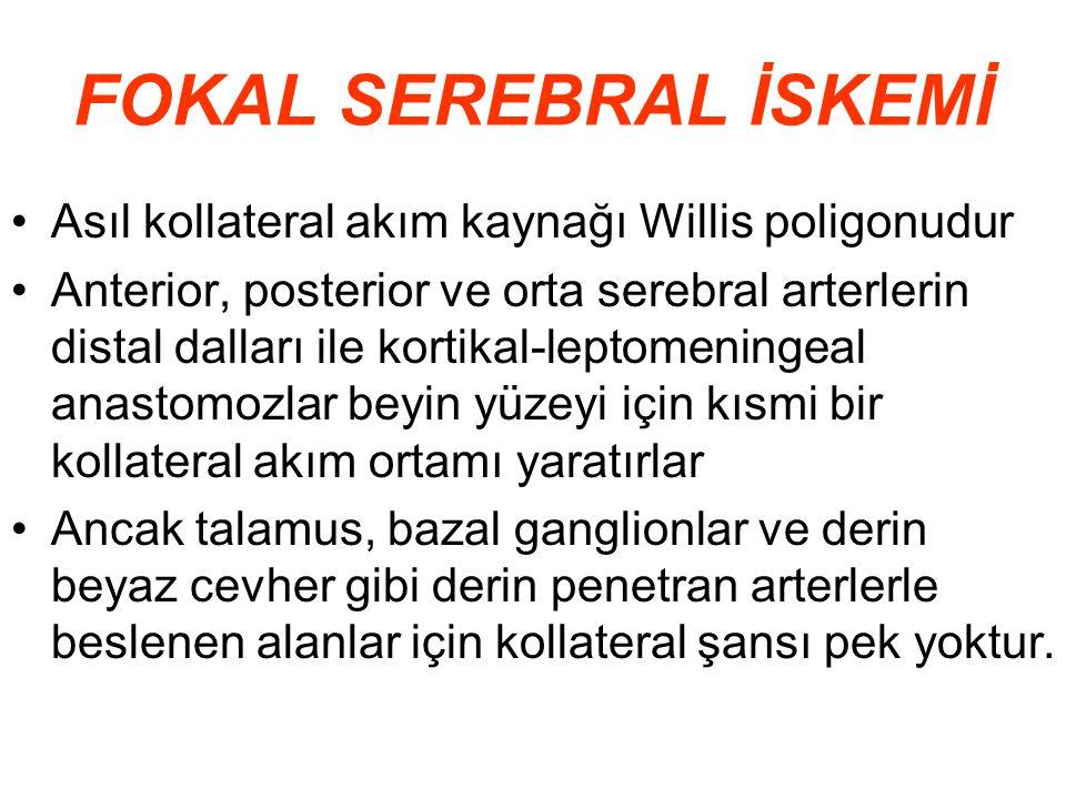 FOKAL SEREBRAL İSKEMİ Asıl kollateral akım kaynağı Willis poligonudur Anterior, posterior ve orta serebral arterlerin distal dalları ile kortikal-lept