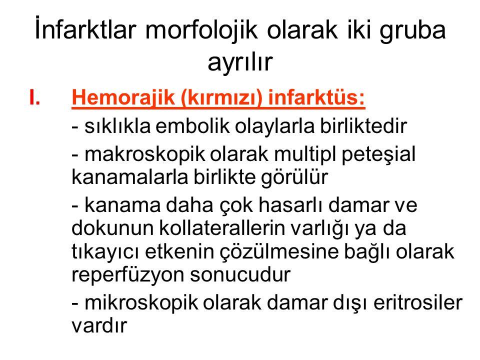 İnfarktlar morfolojik olarak iki gruba ayrılır I.Hemorajik (kırmızı) infarktüs: - sıklıkla embolik olaylarla birliktedir - makroskopik olarak multipl