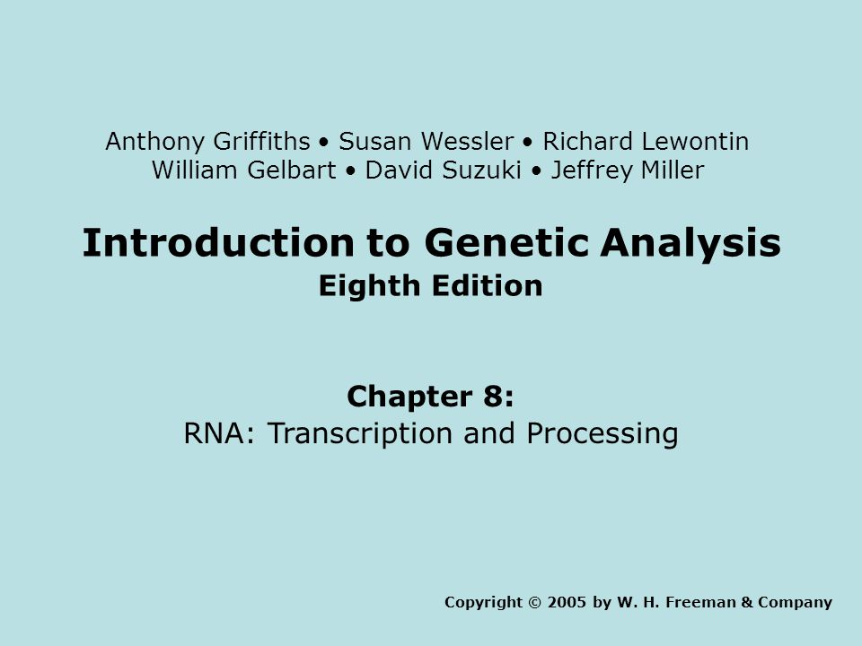 Introduction to Genetic Analysis Eighth Edition Chapter 8: RNA: Transcription and Processing Copyright © 2005 by W.