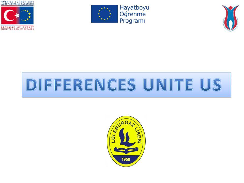 2013 Teklif Çağrısı Döneminde Hayatboyu Öğrenme (LLP)/ Comenius Programı Çok Taraflı Okul Ortaklıkları proje teklif sayısı 1647, kabul edilen proje sayısı 493 tür.