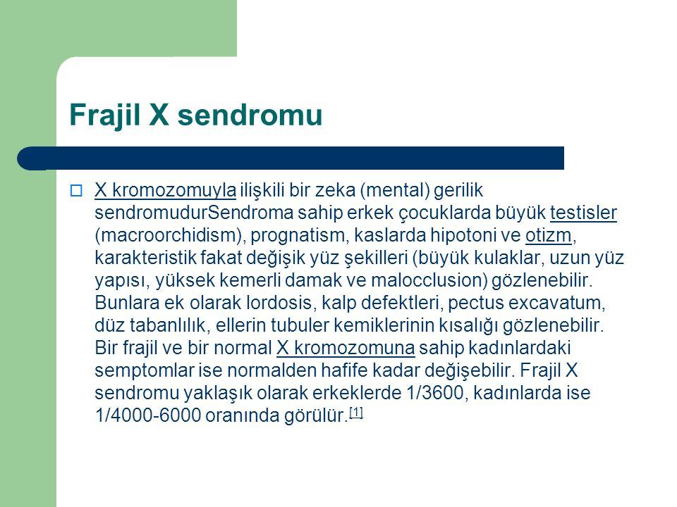 Frajil X sendromu  X kromozomuyla ilişkili bir zeka (mental) gerilik sendromudurSendroma sahip erkek çocuklarda büyük testisler (macroorchidism), pro